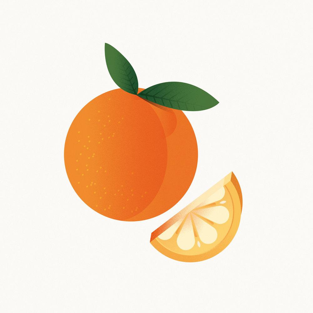 Fruit-&-Veg-09.jpg