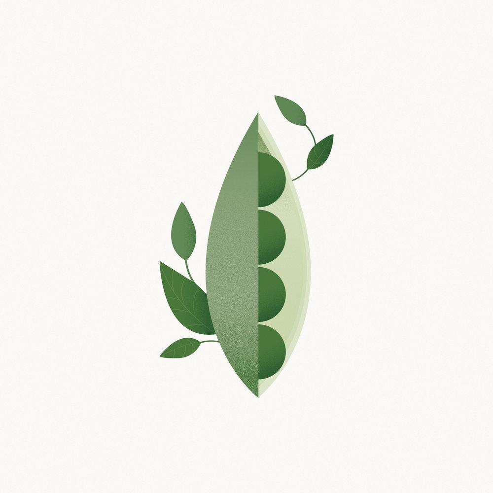 Fruit-&-Veg-14.jpg