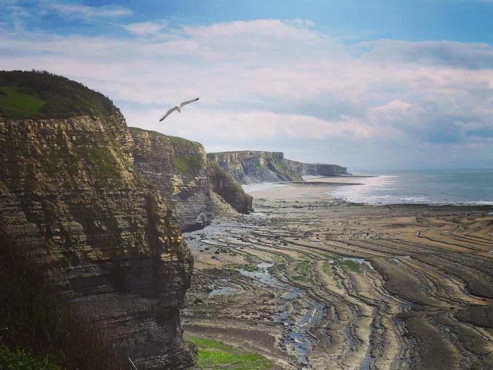 The cliffs of the Glamorgan Heritage Coast