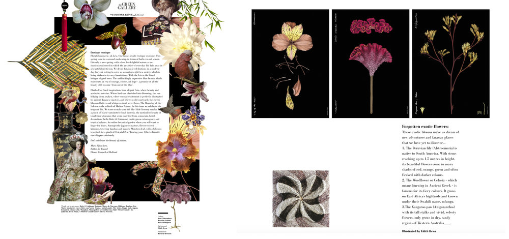 Green Gallery Online Magazine NL
