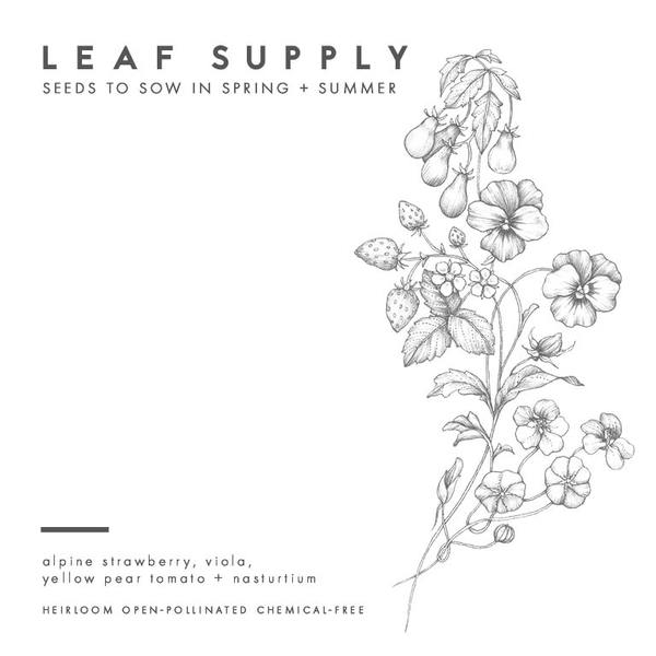 Leaf Supply seed packs