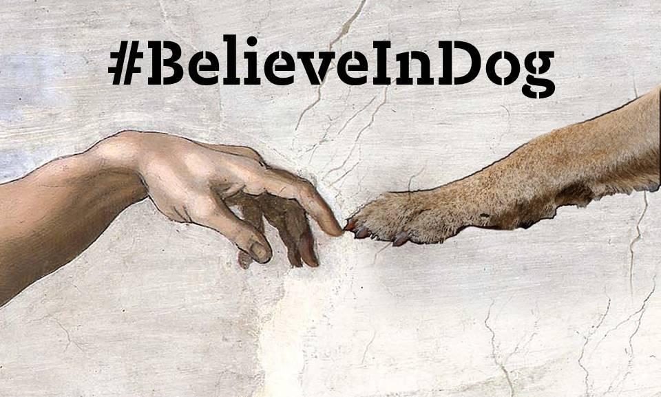 Believe in Dog image INC HEADLINE.jpg