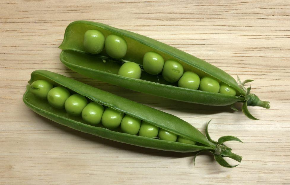 Peas-one-loose-978x624.jpg