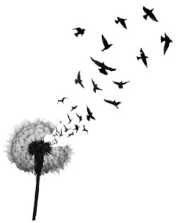 Dandelionbirds.jpg
