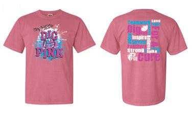 Dig Pink — Paul VI High School Volleyball
