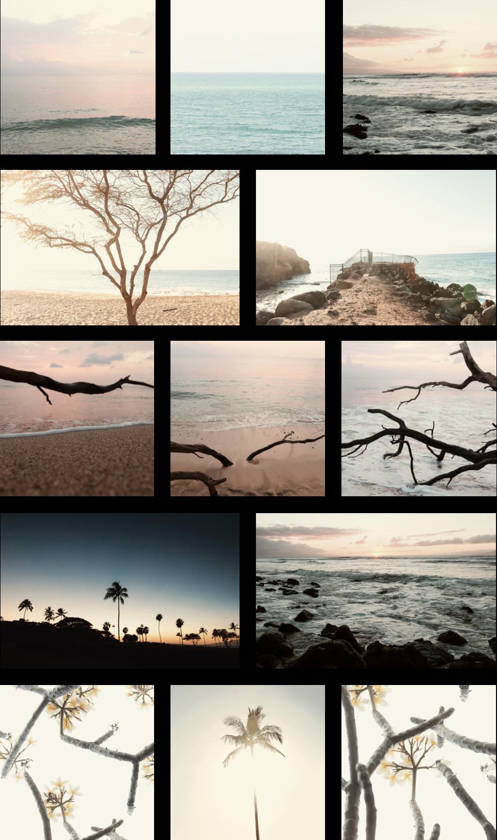 1603-28_Maui.png