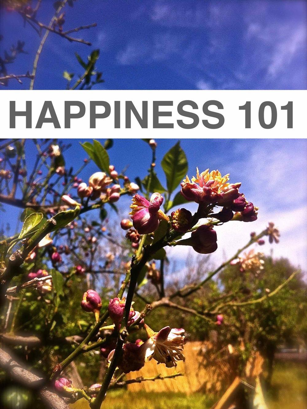 Happiness 101 image.jpg