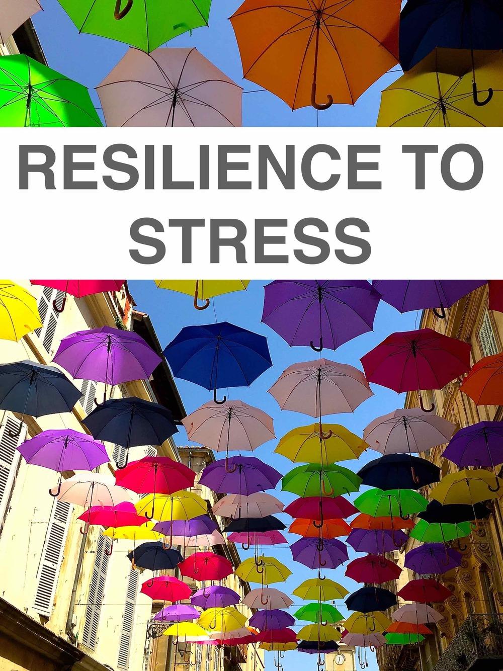 Resilience image.jpg