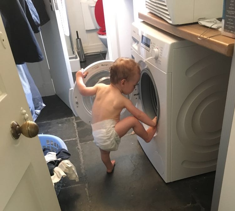 My nephew.  He loves washing machines.