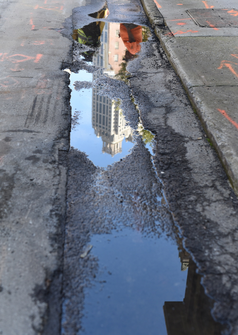 reflection-in-puddle-jpg