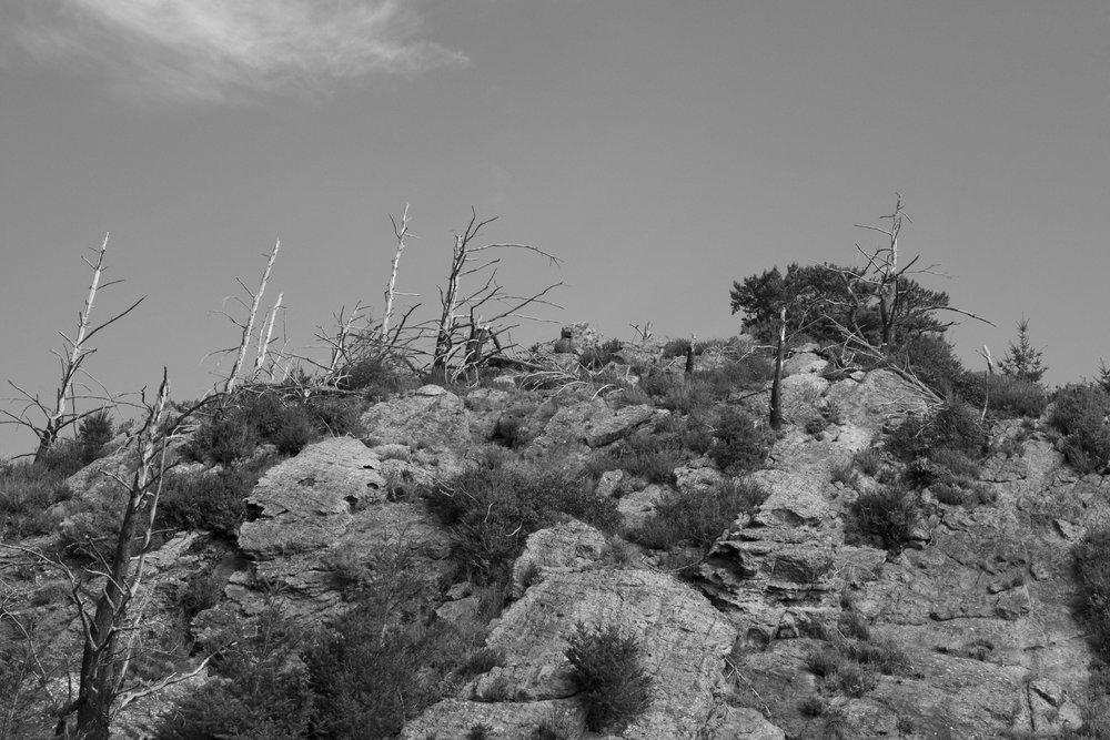 Point Rheyes_57.jpg