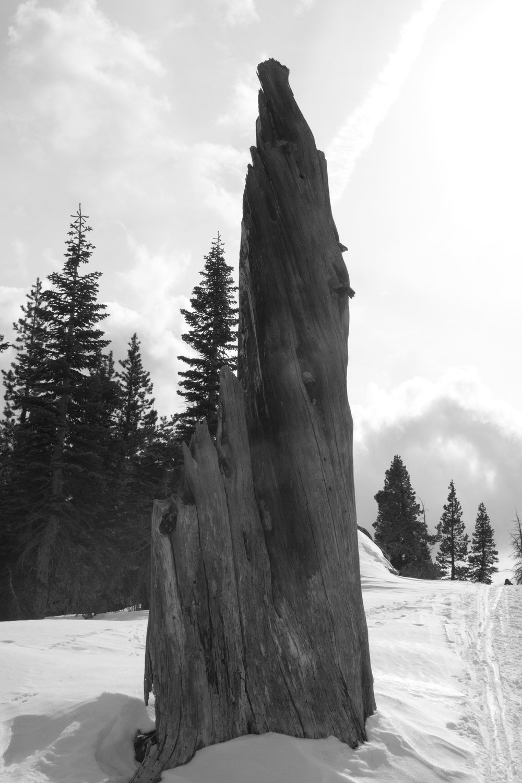 sierras 2012_8.jpg