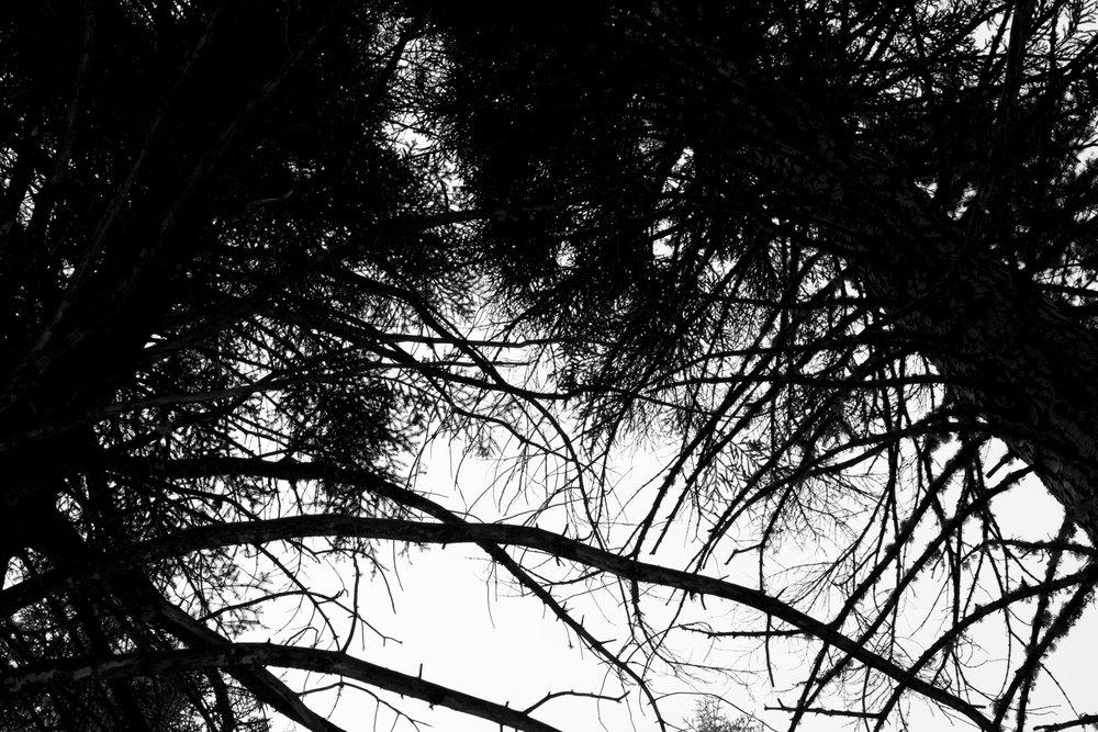 sierras 2012_259.jpg