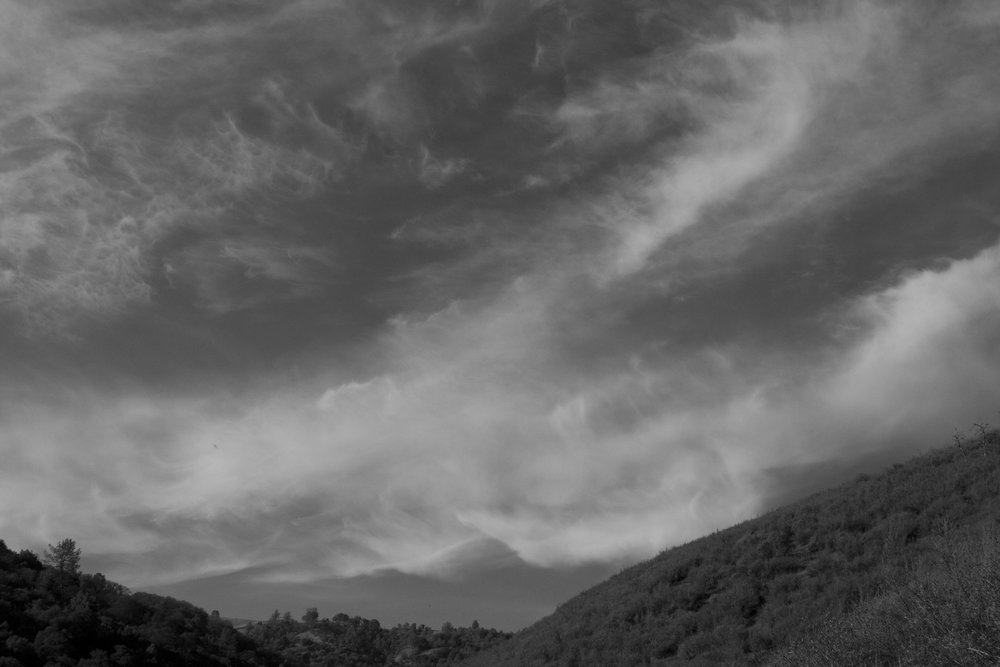 Henry W. CoeOhlone Wilderness_81.jpg
