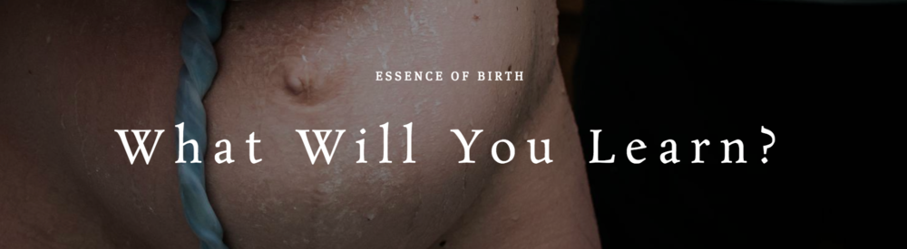 online birth photography course topics