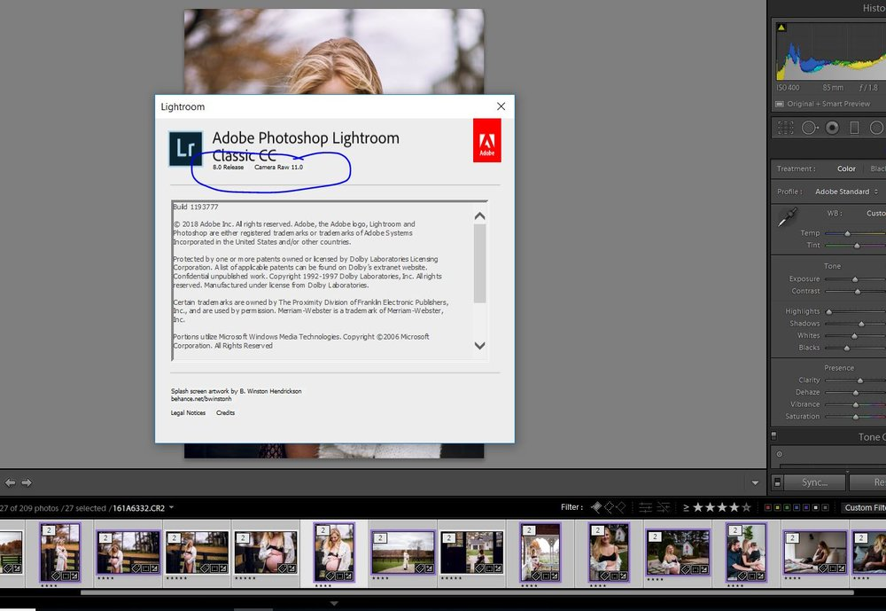 How to Install Lightroom Presets — Birth Becomes Her | Birth
