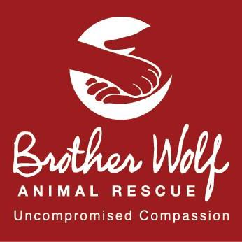"BROTHER WOLF SANCTUARY  ""Our vision is for a world that embraces our core ethic of Uncompromised Compassion. Our mission, the work we do every day toward that vision, is to provide the resources and life-saving programs to help build No Kill Communities."""
