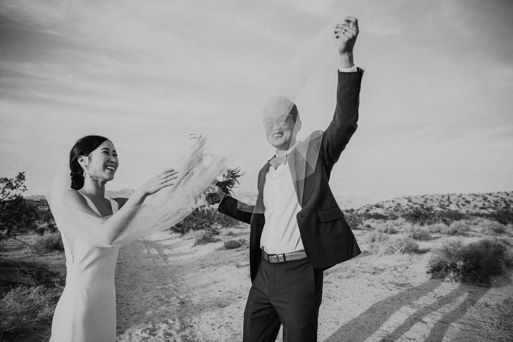Mid Century Modern Palm Springs Wedding Lautner Compound May Iosotaluno Photography 23