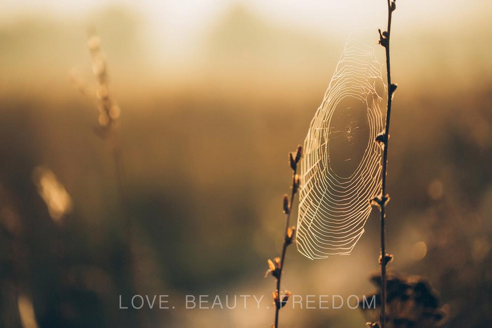girl and nature-2.jpg