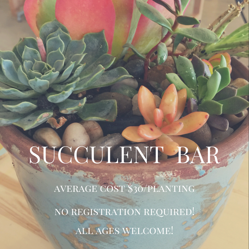 succulent bar fb-2.png