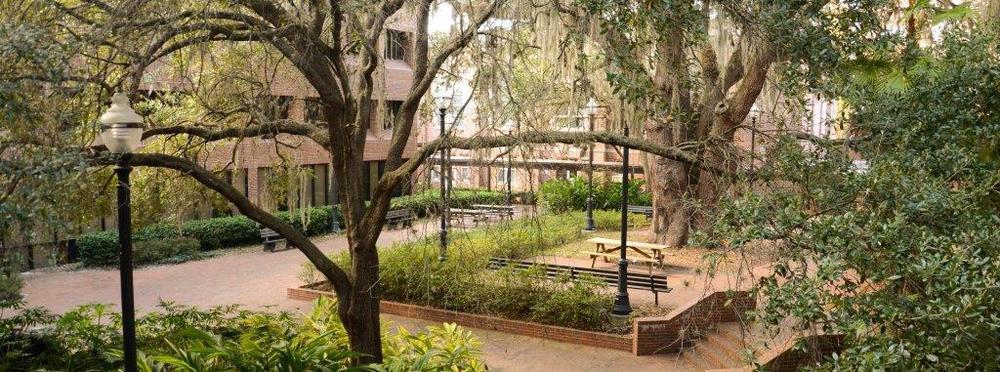 uf campus.jpg