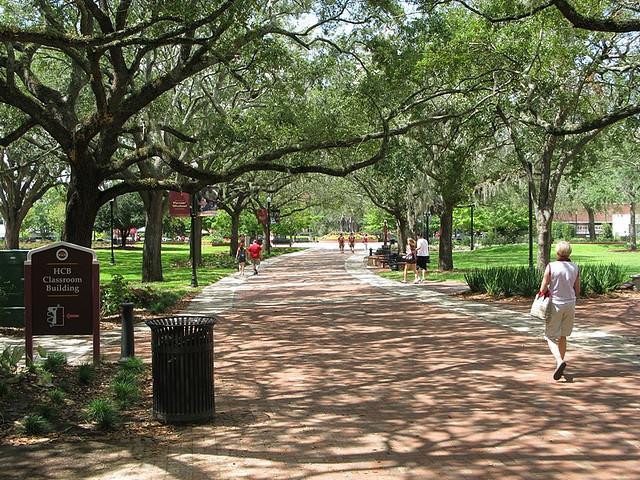 fsu campus 3.jpg
