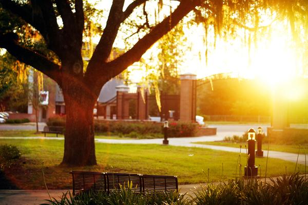 fsu campus 9.jpg