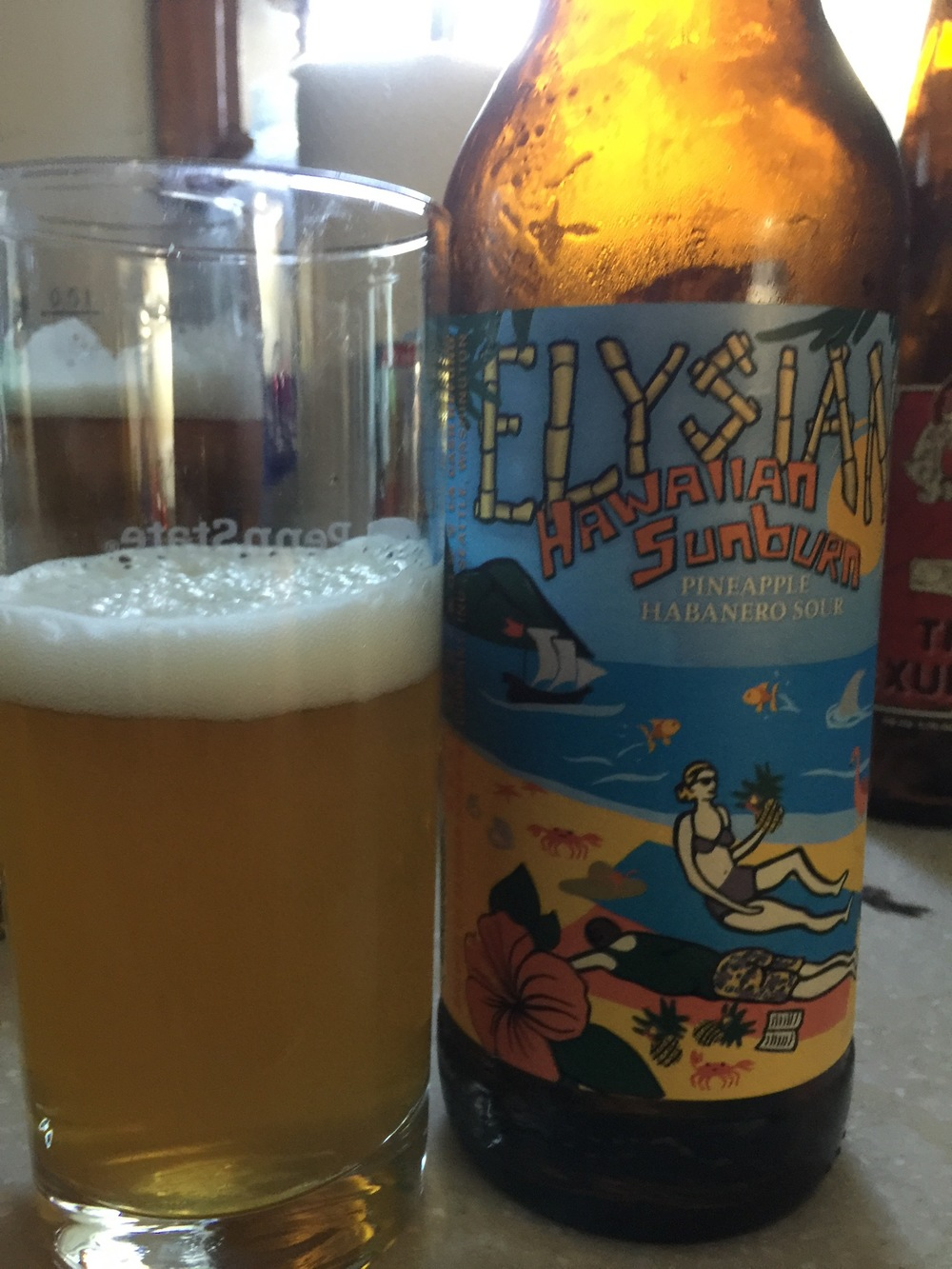 Elysian Brewing Hawaiian Sunburn Pineapple Habenero Sour Ale