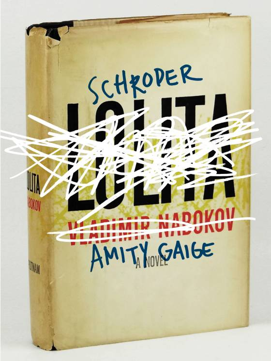 Not the original cover. Photo via Vulture.com from the article by Kathryn Schulz on Amity Gaige's Novel Schroder.