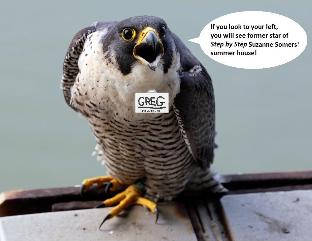 falcon guide