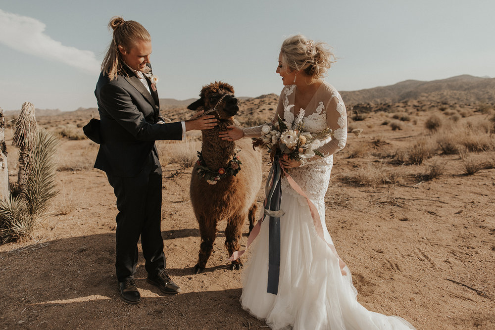Forever Cole Events + Bree Record Photography-78.jpg