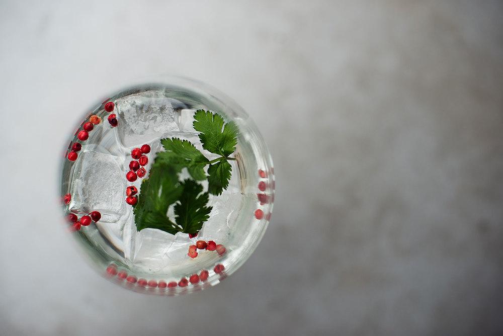 gin_02.jpg