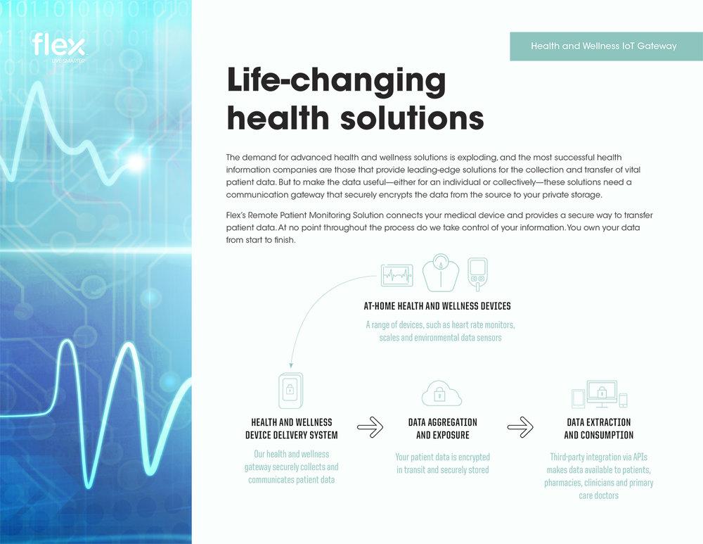 Flex Health Gateway-1.jpg