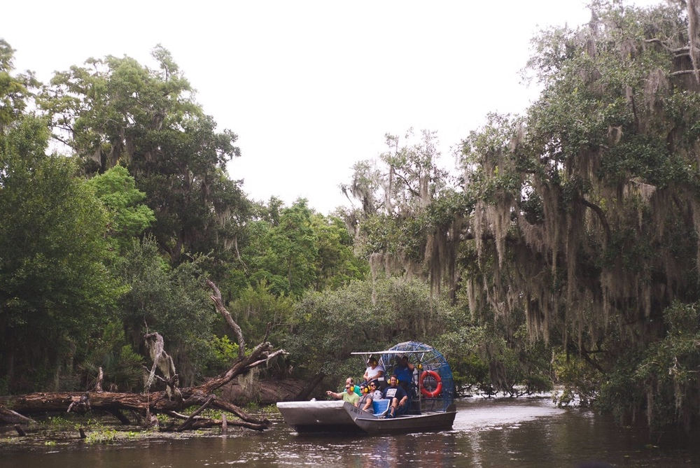 airboat_in_the_swamp.jpg