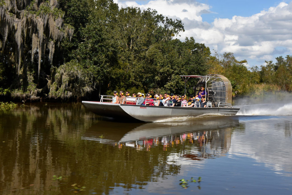 Airboat Swamp Tours - Find our Airboat swamp tours here starting at just $50 per person!
