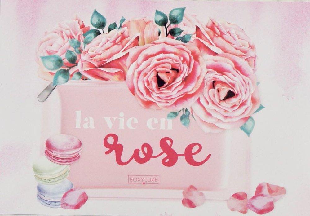 March 2018 Boxyluxe-la vie en roseDSC00678.jpg