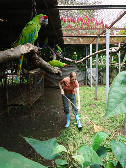 Helen-cleaning-aviary.jpg