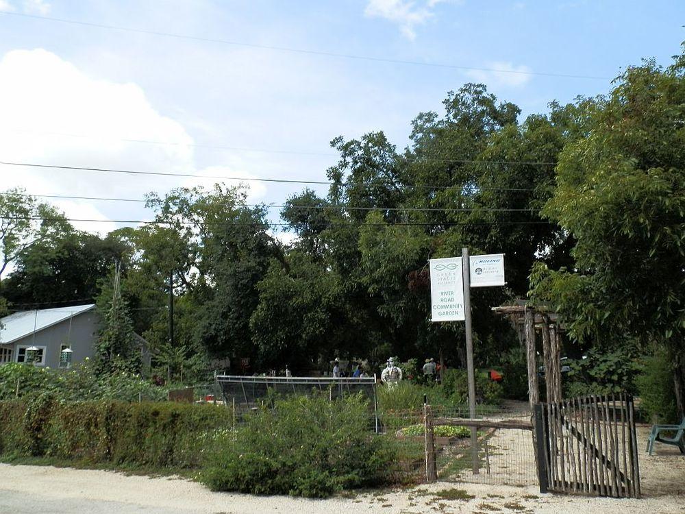 River Road Community Garden, San Antonio TX
