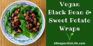 Jeff Tritten Black Bean Sweet Potato Logo.jpg
