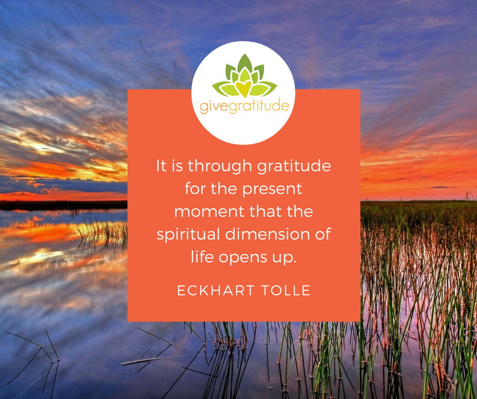 Tolle Gratitude Quote (1).png
