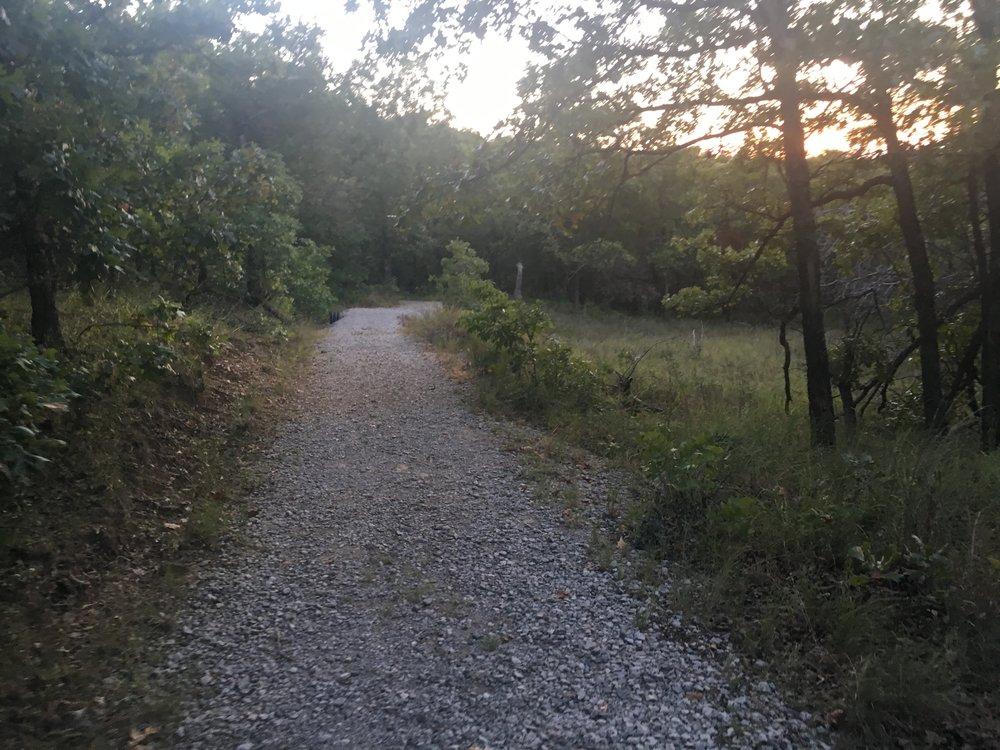 Keystone Ancient Forest 170729 (Scott Emigh) 014.jpg