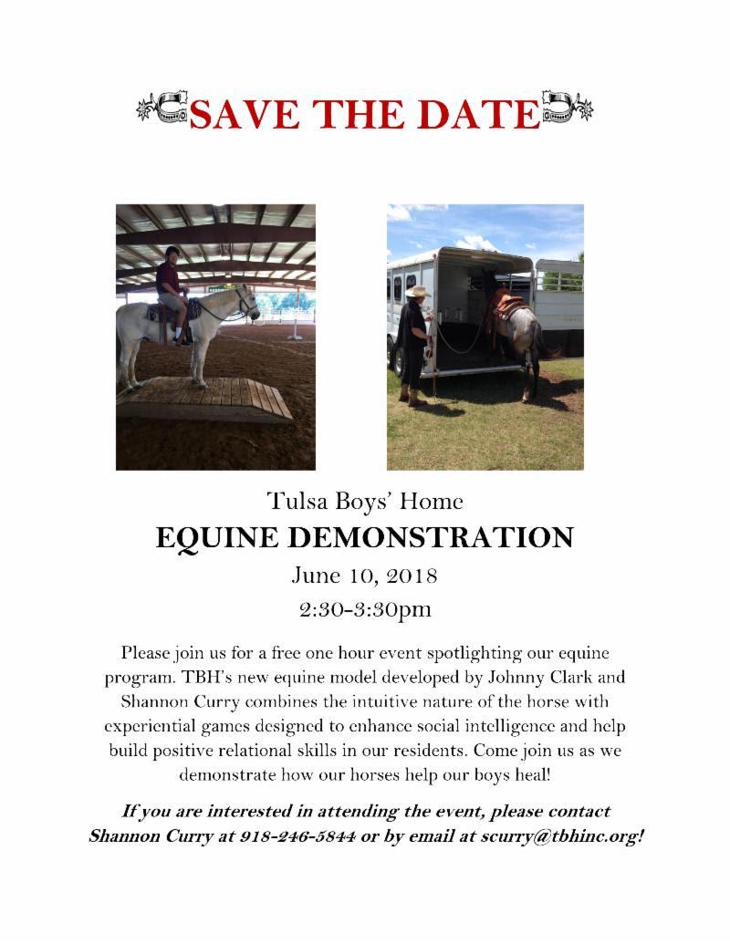 180610 Equine Demonstration.jpg