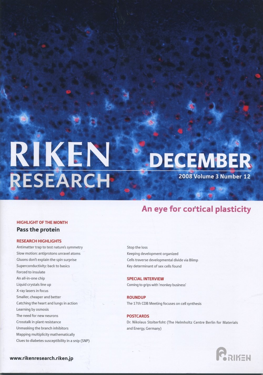 RIKEN Rsch Dec 08 cover.jpeg