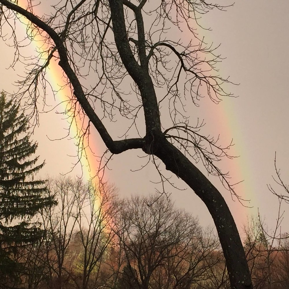 Rainbows and Lightning Bolts