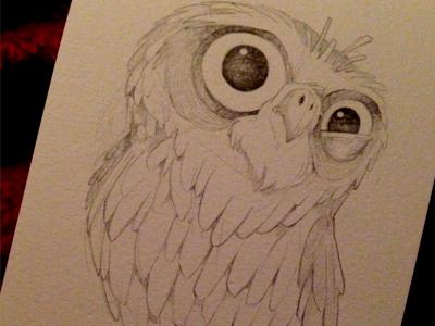 owl_1aday_dribb.jpg