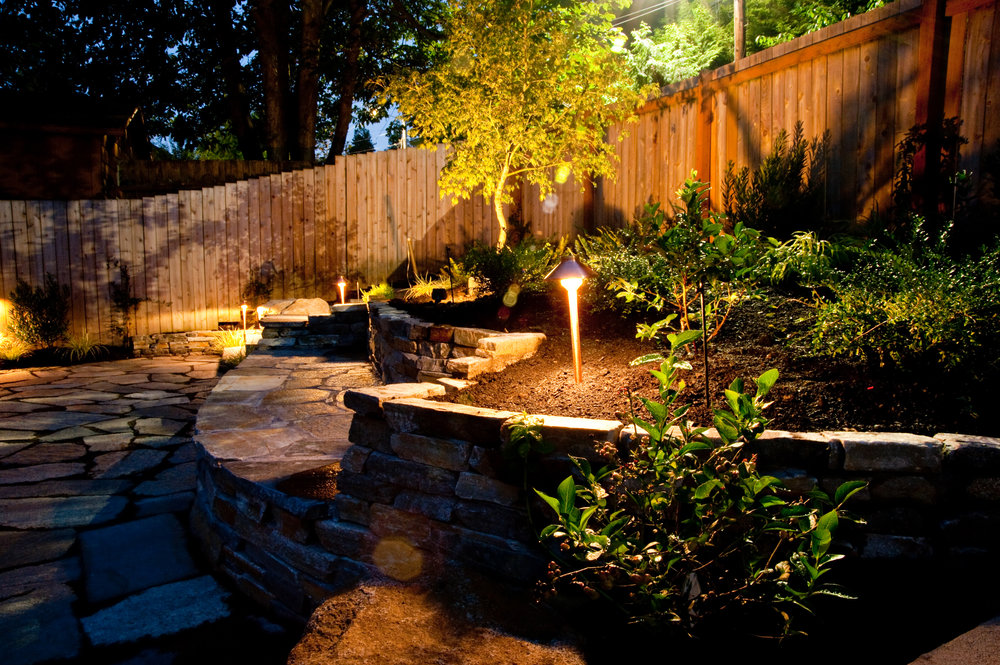 BACK YARD LIGHTS AFTER.jpg