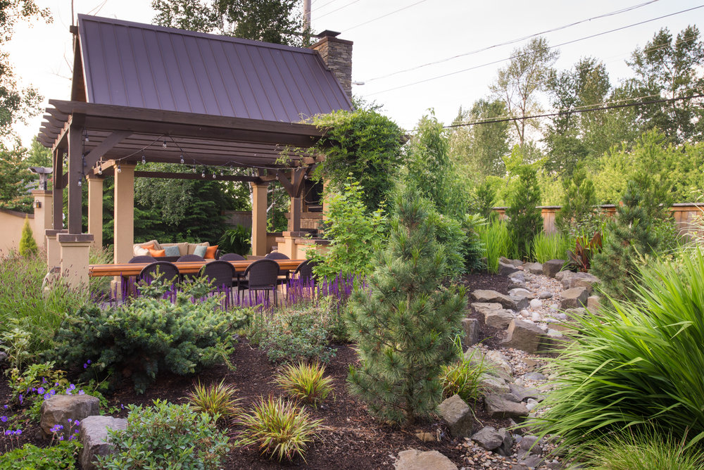 BACKYARD LANDSCAPE WITH OUTDOOR KITCHEN.jpg