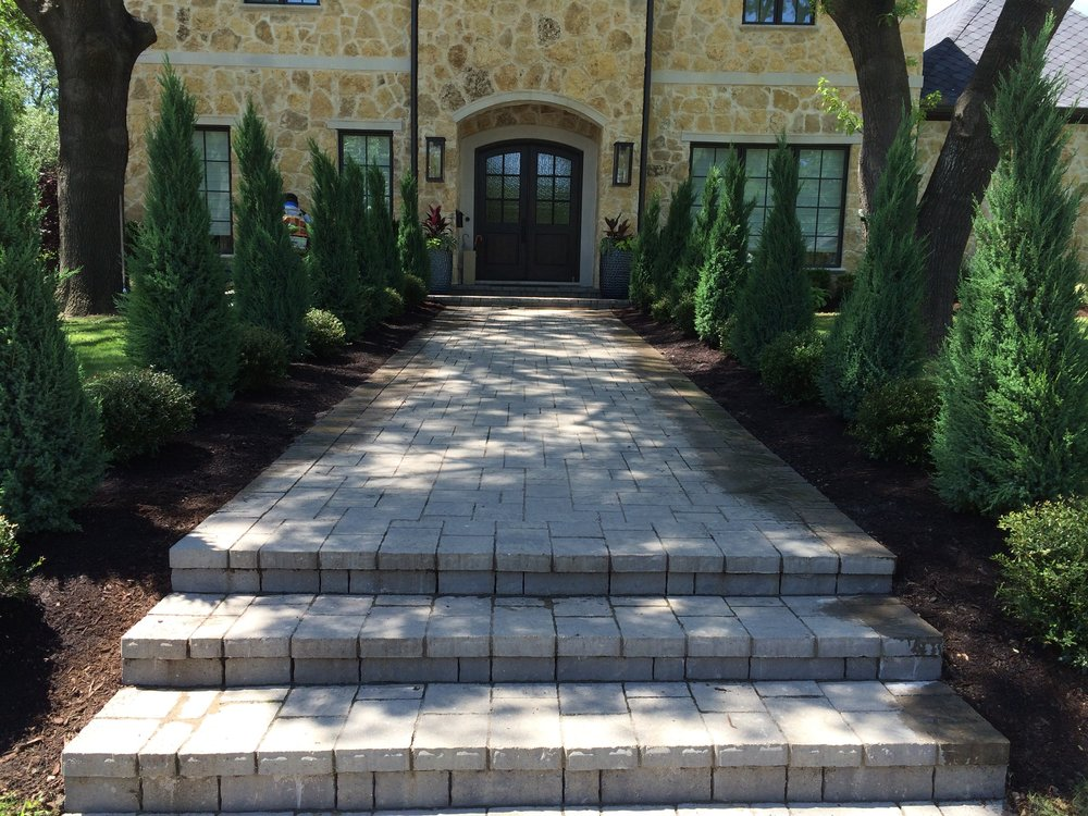 STONE WALKWAY WITH BLUE POINT JUNIPERS.jpg