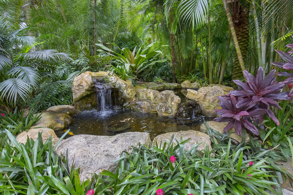 WATER POND WITH TROPICAL LANDSCAPE.jpg