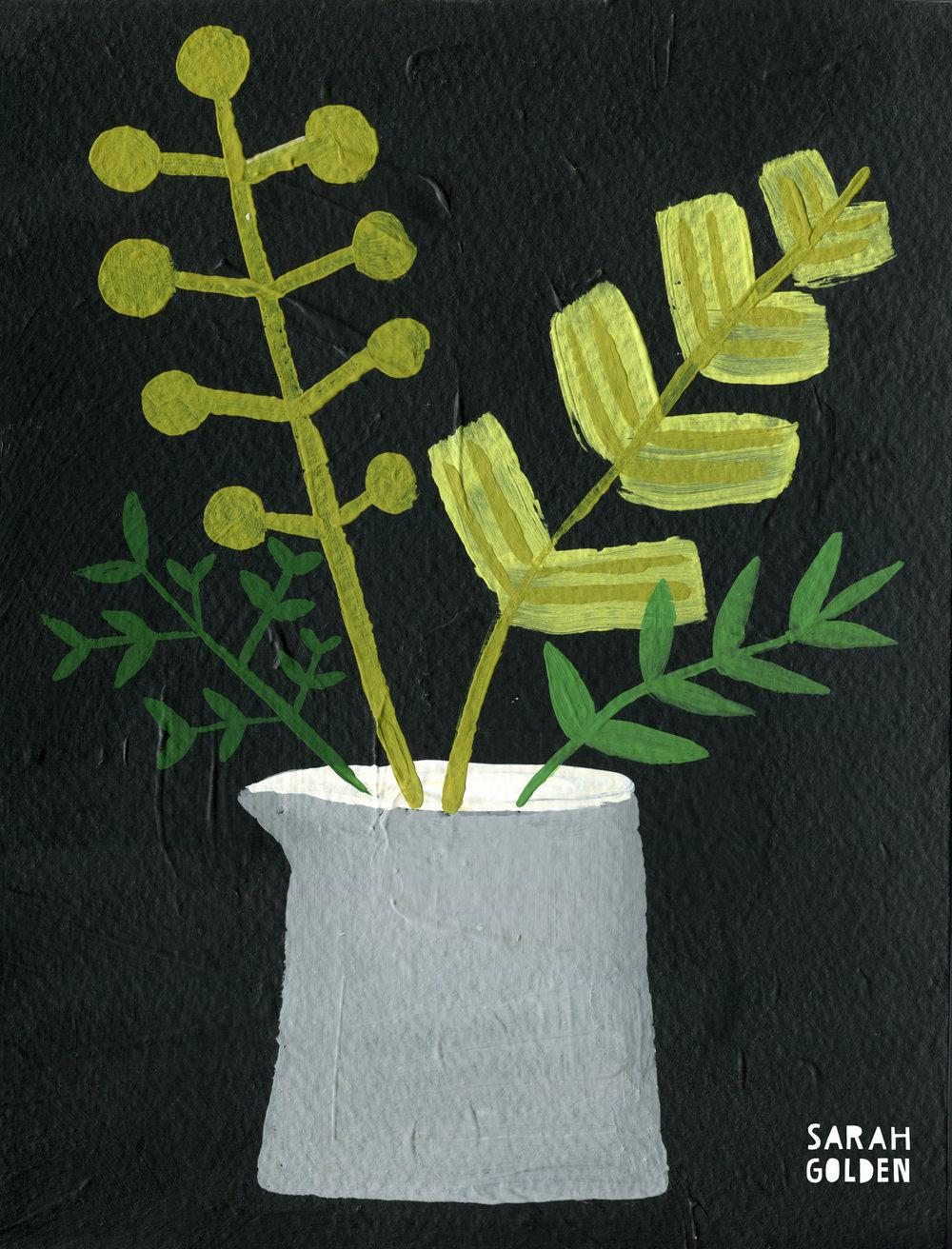plant2_sarah_golden_web.jpg
